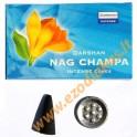 """Incense-cones Darshan """"Nag Champa"""""""