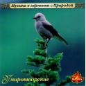 Музыка в гармонии с природой / Умиротворение