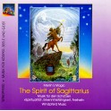 CD: Merlin's Magic / The spirit of Sagittarius